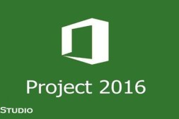 Microsoft Project Professional 2016 Download